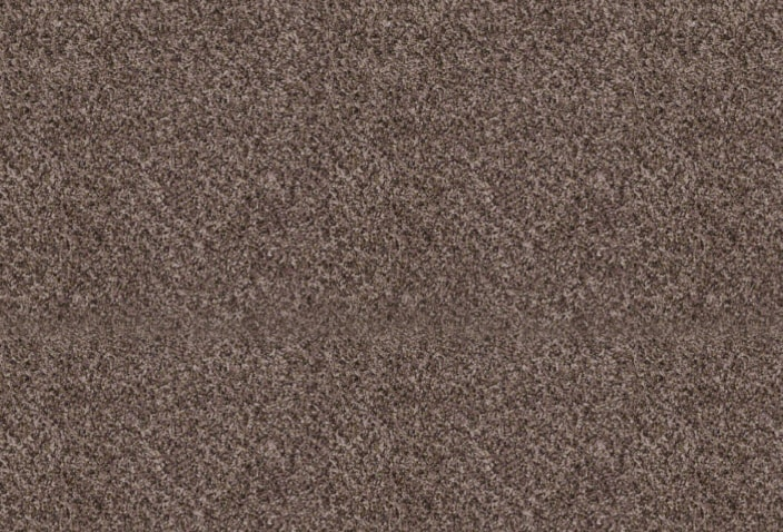 Style 50 B carpet